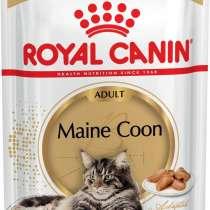 Консервы Royal Canin Maine Coon, в Москве