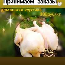 Продаём домашнюю курочку, в Санкт-Петербурге