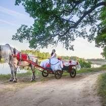 Прогулка в карете в Нижнем Новгороде, в Нижнем Новгороде
