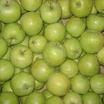 Яблоки Юбиляр оптом, в Самаре