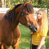 Конные прогулки/фотосессия с лошадью/занятия верховой езды, в Москве