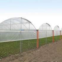Модульная теплица промышленная/фермерская системы MULTY, в г.Бишкек