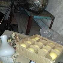 Бильярдные шары Б / У поштучно, в Таганроге