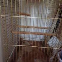 Клетка для крупного попугая, в Ростове-на-Дону