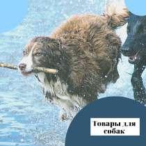 Товары для всех пород собак!, в Ноябрьске