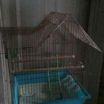 Клетка для птиц, в Красноярске