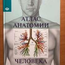 Атлас анатомии, в Сургуте