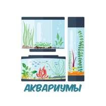 Магазин аквариумистики Hofish. Все виды работ, в Москве
