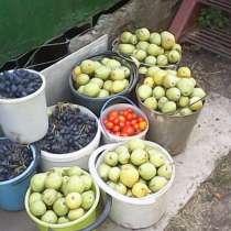 Продам отличную, очень урожайную дачу, в Ростове-на-Дону