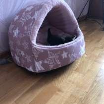 Лежанка для кошки, в Уфе