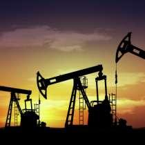 Нефть, Газ, Бизнес инвестиций!!!, в Москве