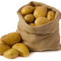 Картофель, в Твери
