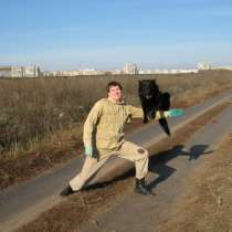 Дрессировка собак в Одессе (район Северного рынка и ТЦ СИТИ, в г.Одесса