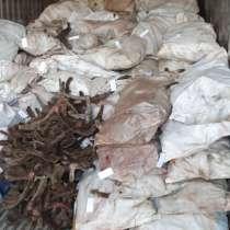 Продаю панты АВС 80%, д 20% цена 3500руб. За кг, в Салехарде