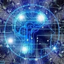 Системный IT продукт восстановительной медицины в СПб, в Санкт-Петербурге