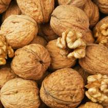 ПРОДАМ грецкие орехи-недорого! Этого года урожай!, в г.Гомель