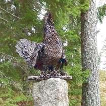 "Скульптура из металла""Глухарь на камне"", в Краснодаре"