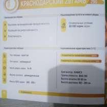 Семена кукурузы Краснодарский 291, в Краснодаре