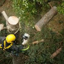 Удаление деревьев, в Ногинске