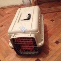 Контейнер для перевозки собак, в г.Кутаиси