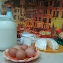 Деревенские яйца, молоко, сыр, сметана, в Владимире