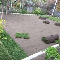 Рулонный газон. Посевной газон, в Анапе