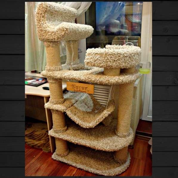 Изготовление комплексов и домиков для кошек на заказ в Ростове-на-Дону фото 19