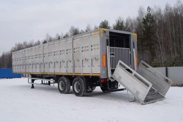 Скотовоз Тонар 98262 в Москве фото 5