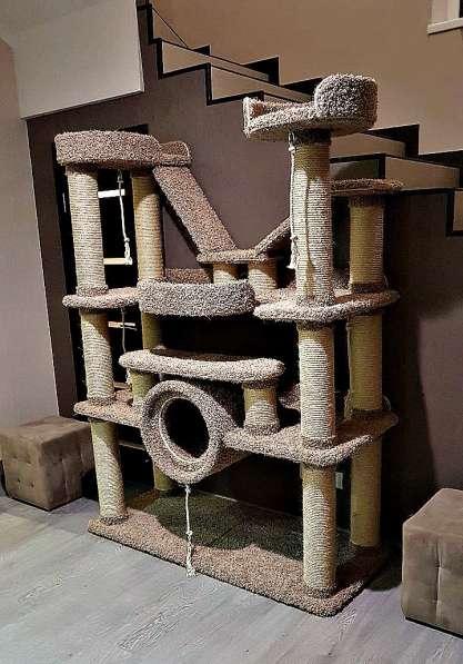 Изготовление комплексов и домиков для кошек на заказ в Ростове-на-Дону фото 16