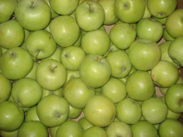 Яблоки Юбиляр оптом