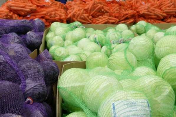 Сетка овощная, сетка рукав по низким ценам