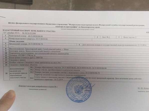 Продам земельный участок 50 га Сухобузимский р-он Шила