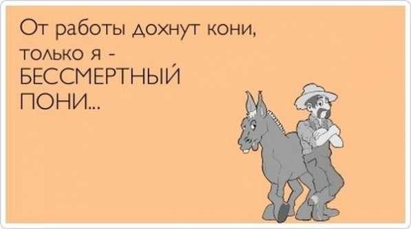 Сотрудник в отдел маркетинга и продвижения росс. компании