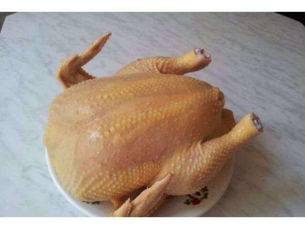 Мясо домашней птицы