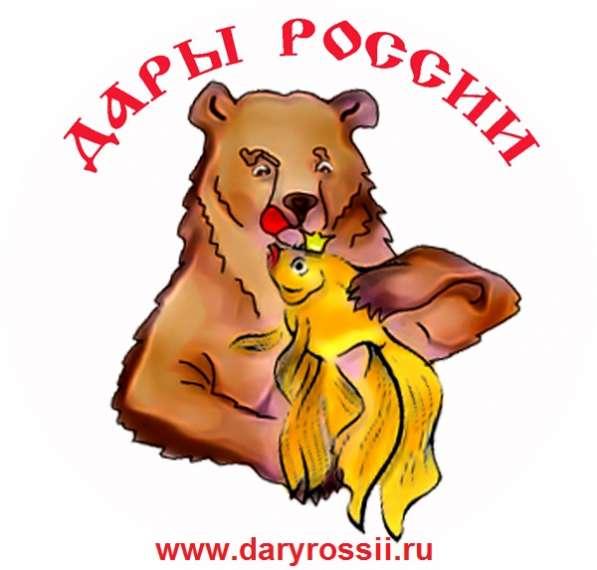 """Интернет магазин морепродуктов - """"Дары России"""""""
