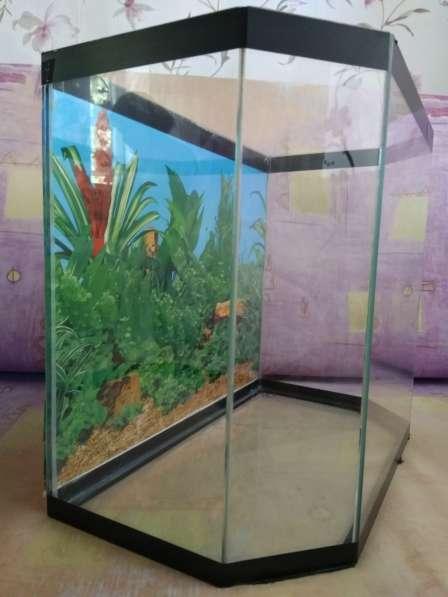 Продам аквариум в Красноярске фото 3
