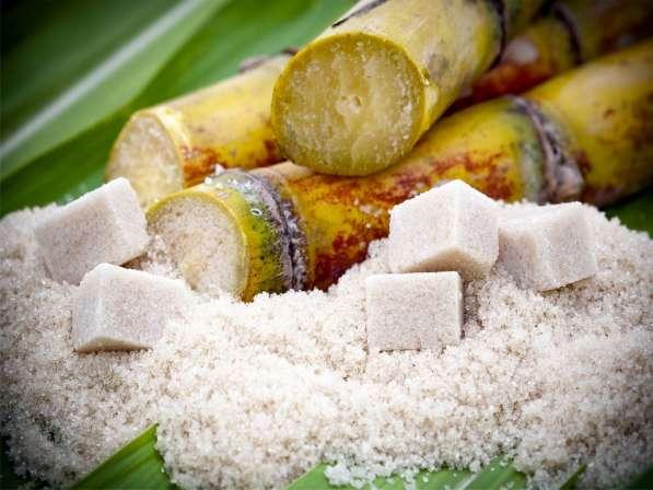 На постоянной основе, на экспорт сахар