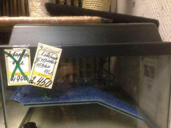 Продаю террариум для черепах 40 литров