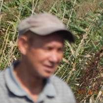 СКаратаев, 48 лет, хочет найти новых друзей, в Владивостоке