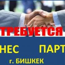 Ищу бизнес партнера, г. Бишкек !!! В торговую сферу деятель, в г.Бишкек