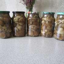 Грибы маслята солёные в баночках, в г.Саратов