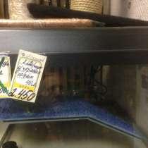 Продаю террариум для черепах 40 литров, в Москве