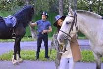 Катание на лошадях, романтика Красноярск, в Красноярске
