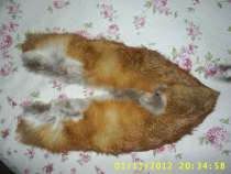 Горжетка из рыжей лисицы, в Красноярске