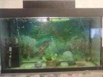 Продам аквариум на 200 литров, в Обнинске