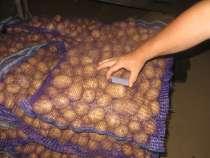 АПК реализует картофель крупный и мелкий, в г.Бежецк
