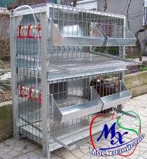 Клетка для кур несушек, в г.Киев