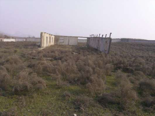 Продается Ферма для жвотноводства в г. Ташкент Фото 1