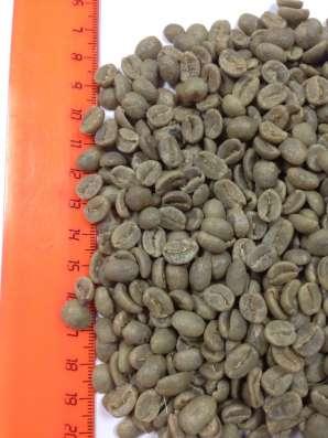 Кофе зелёный Арабика 100% Колумбия