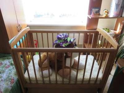 детскую кроватку Лель в Омске Фото 4